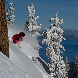 Tree-skiing-Credit-Heavenly-Mountain-Resort-sm